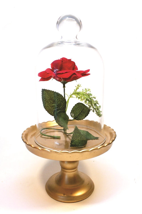 Rosa na Cúpula