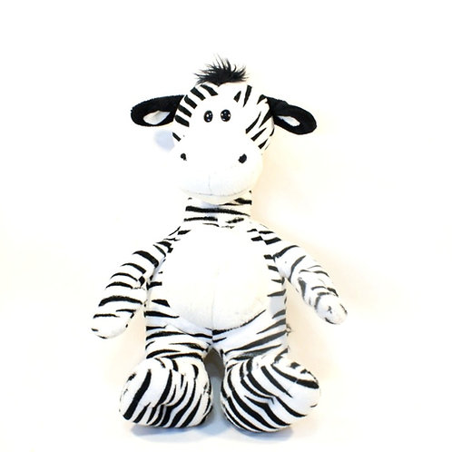 Filhote Zebra