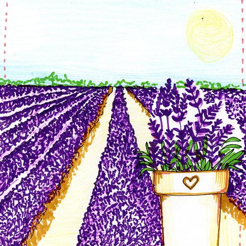 Purple Lavender Field Card
