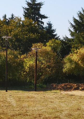 Les poteaux à cigognes avec notre vache highland