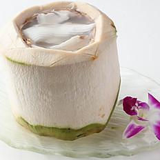 605 Coconut Algal Jelly