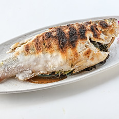 234 Salt-Crusted Grilled Fish (Mullets / Striped Bass Bass )