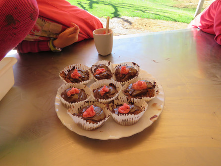 Cupcakes and ladybugs