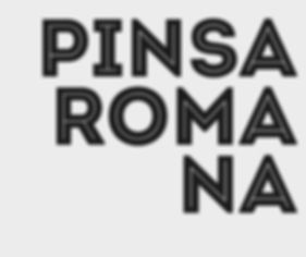 pinsa1.JPG