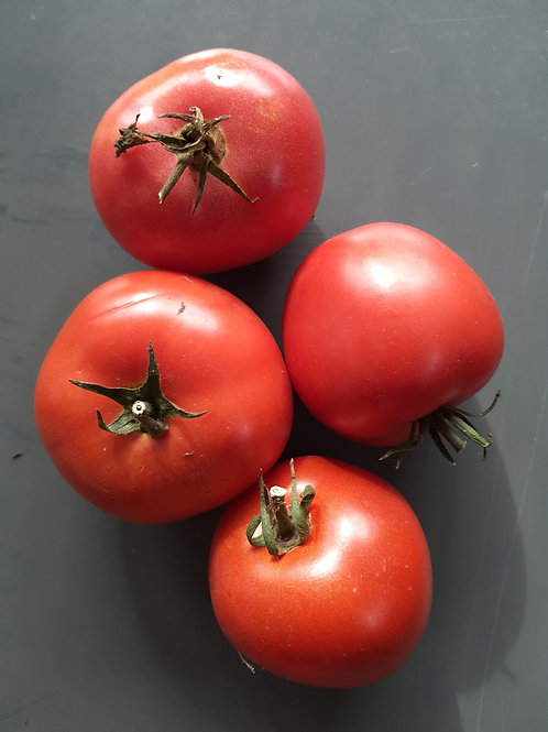 Tomates Rondes - 500 gr