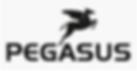 Logo Pegasus.png
