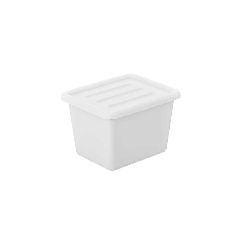 Organizing Bin With Lid
