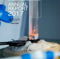 DowAnnualReport2017FrontCOVER.jpg