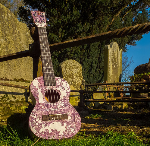 Ready To Buy Ukulady series ukulele