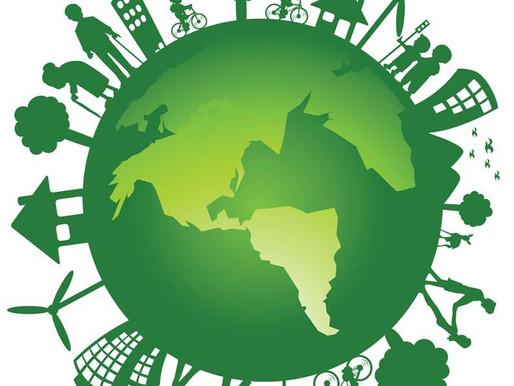 Gestão Ambiental: Entenda o que é e as vantagens desse sistema
