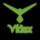 LOGO Vidax 2020-01.png