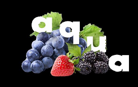 Aqua frutas, baja resolución.png