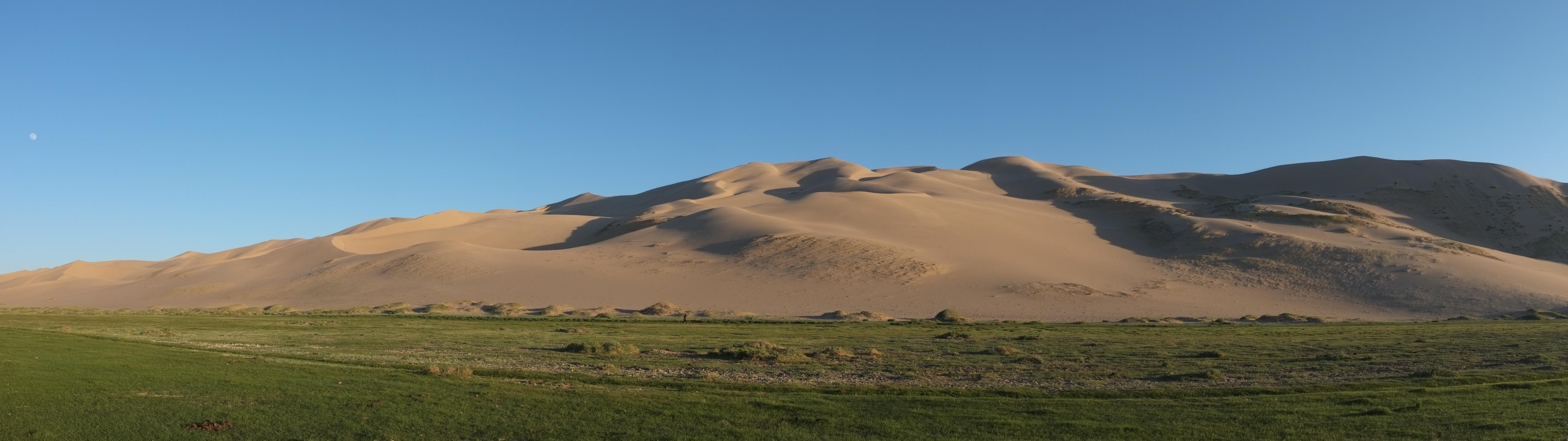 Dune de Khongor (Désert de Gobi)