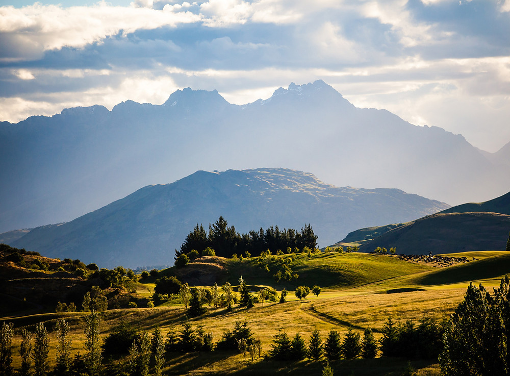 New Zealand, Central Otago, Remarkables, Records Heather Doug, Travel