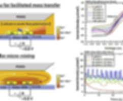 Microfluidic Amperometry - Jui-Hong.jpg