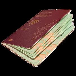 illustrated passport