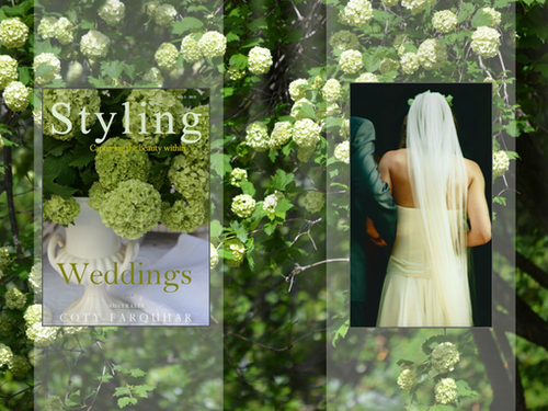Weddings in The Southern Highlands of NSW