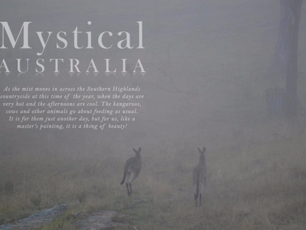 MYSTICAL AUSTRALIA - THE MIST ROLLS IN ACROSS THE SOUTHERN HIGHLANDS