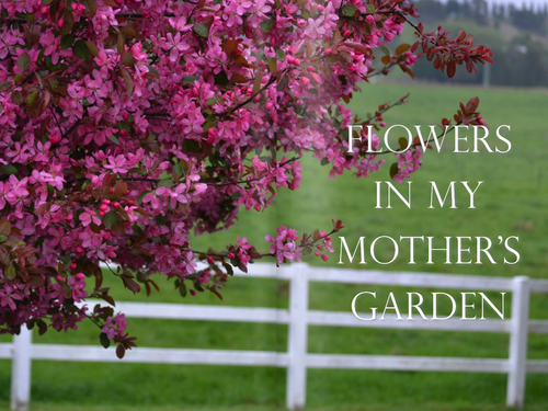 FLOWERS IN MY MOTHER'S GARDEN - STYLING MAGAZINE