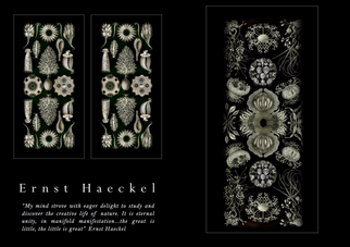 STYLING MAGAZINE salutes Ernst Haeckel, German biologist, naturalist, philosopher and artist extraor