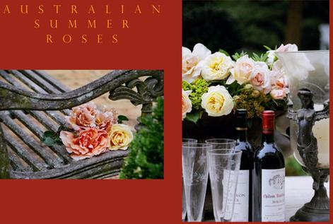Australian Summer Roses
