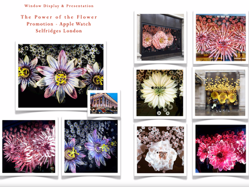 THE POWER OF THE FLOWER - PROMOTION STYLING FOR  APPLE WATCH - SELFRIDGES LONDON
