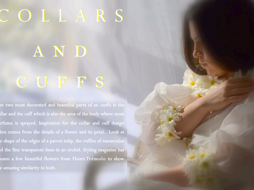 Collars & Cuffs ... Flower petal inspiration