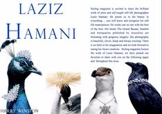 LAZIZ HAMANI - Brilliant work of a self taught still life photographer.