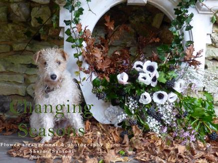 CHANGING SEASONS - STYLING MAGAZINE CONTRIBUTOR SHARON SANTONI'S AUTUMN MIX