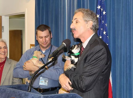CITY ATTORNEY MIKE FEUER HIGHLIGHTS PUPPY SCAMS