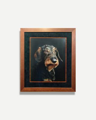 Dog Portrait - Framed Art