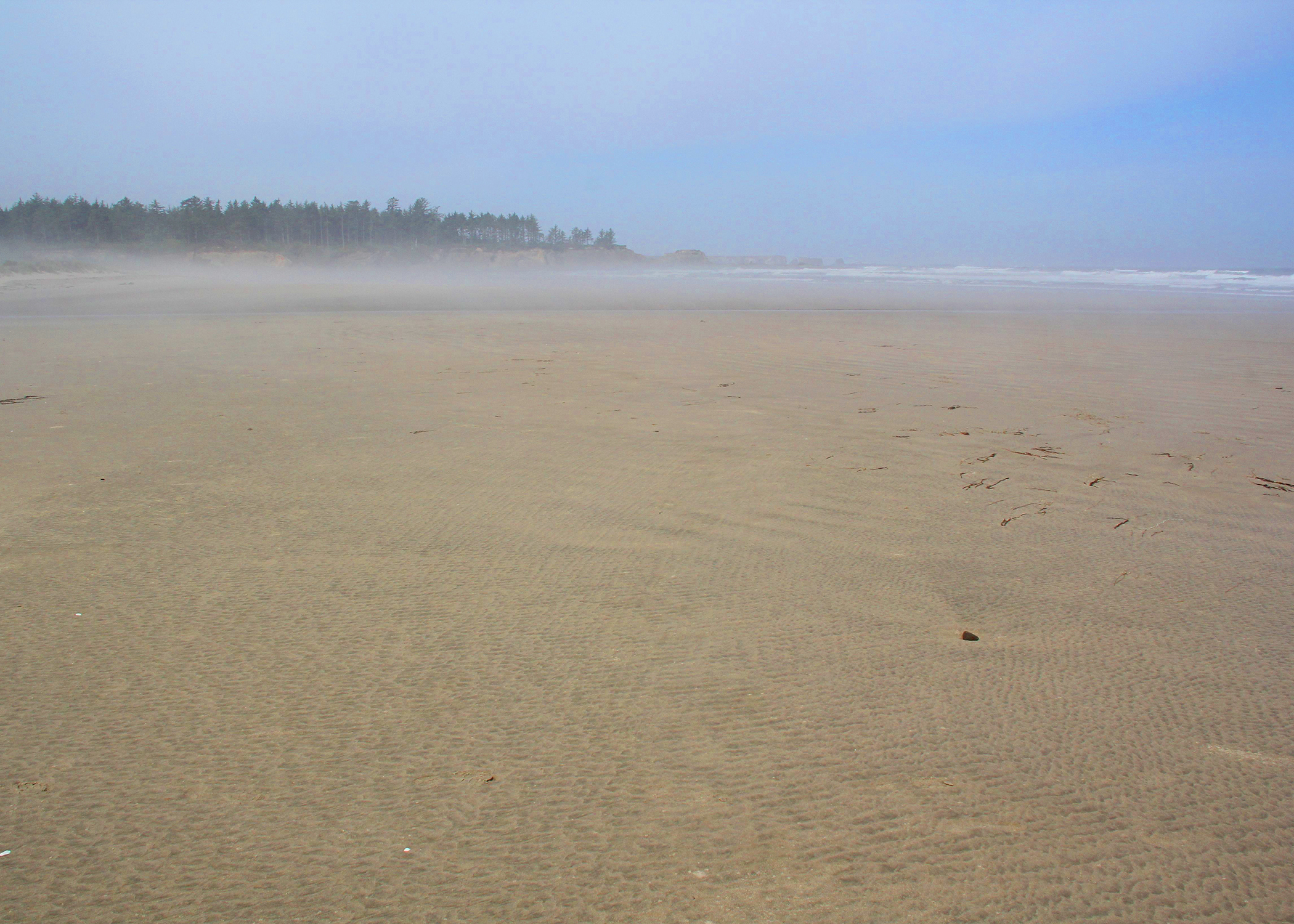 OregonBeach2013.jpg
