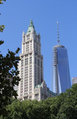 NYColdandnew2013.jpg