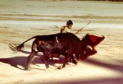 bullfight1963.jpg