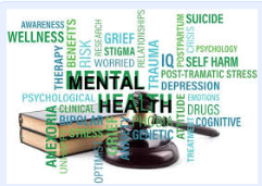 What is Mental Health Community Court? (Washington D.C.)