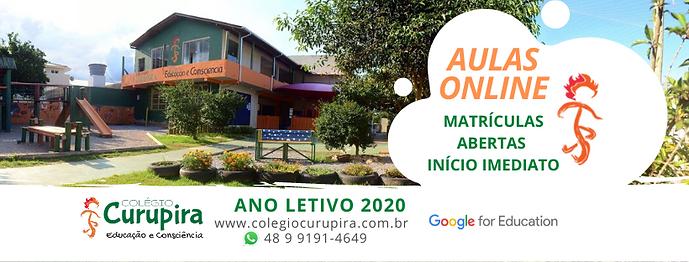 Colegio Curupira aulas online remotas 20