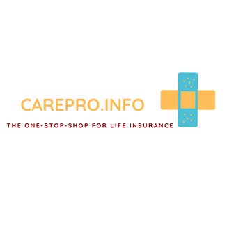 The Life Insurance Logo (1).png