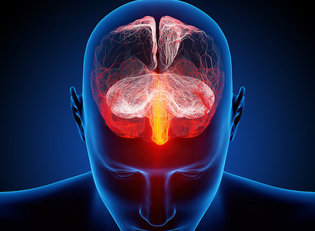 Why Brain Injuries Make Us More Susceptible To Heavy Metals, Viruses, Yeast & Fungi