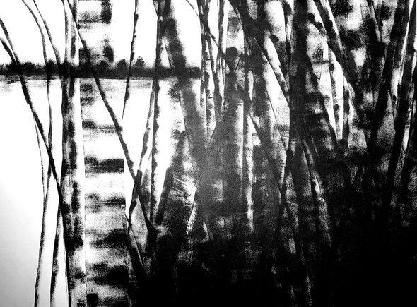 Bamboo Series 10