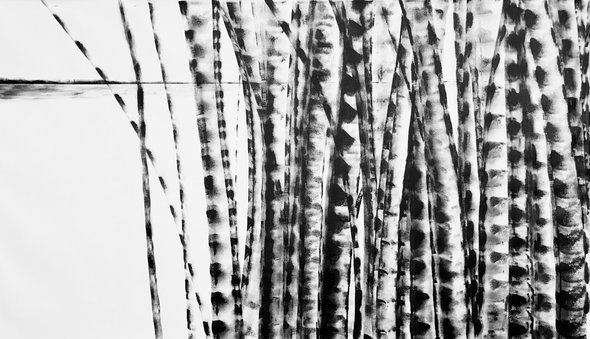 Bamboo Series 14