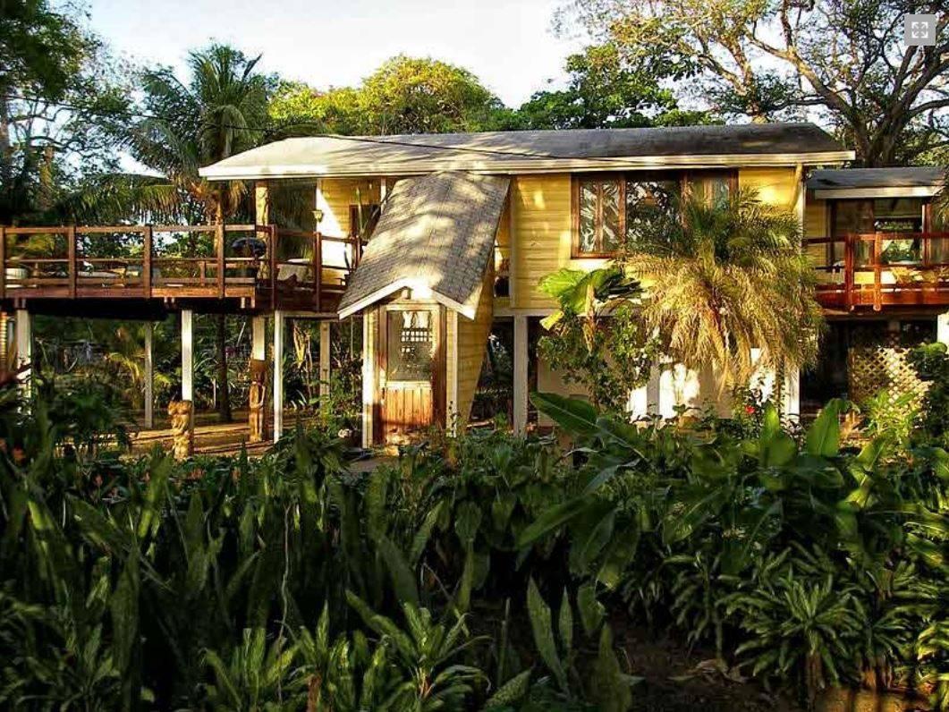 The Mango House
