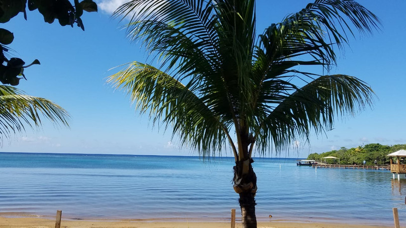 Sandy Bay views