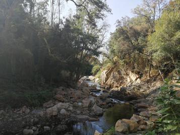 La rivière de montagne