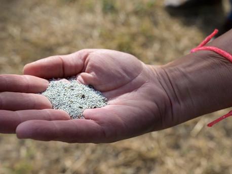 ZEOLITAS, la forma natural másantigua para descontaminarse.