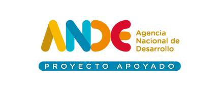 Logo ANDE color.png