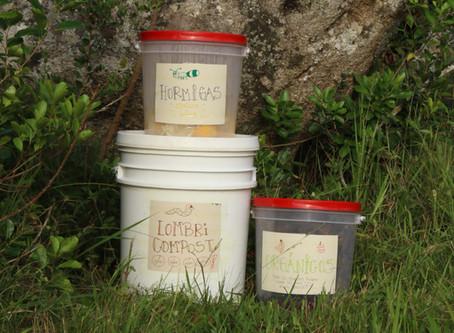 ¿Cómo separar tus residuos orgánicos para aprovecharlos al maximo?