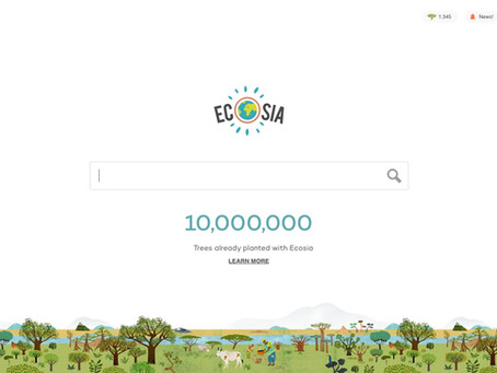 Conocé ECOSIA, una alternativa sustentable a Google.