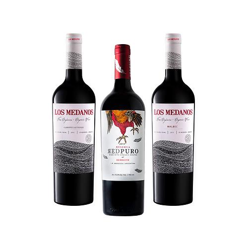 PROMO DEGUSTACION - 3 vinos