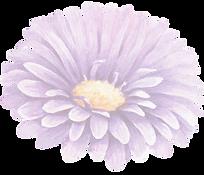 Purple%2520Flower%2520_edited_edited.png