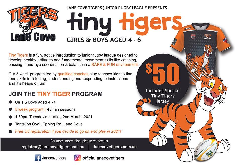 Tiny Tigers 2021.jpg